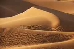 Desert sand dunes. Sahara desert sand dunes with shadows. Concept for holiday and traveling Royalty Free Stock Photography