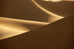 Desert sand dunes. With shadows in evening light Stock Photo