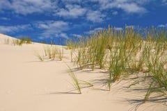 Desert sand dunes Stock Photo