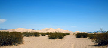 Desert sand dunes Stock Photography