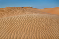 Desert sand dunes Royalty Free Stock Photography