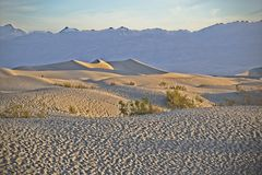 Desert Sand Dunes Death Valley Royalty Free Stock Images