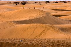 Desert with sand dunes in Gran Canaria Spain. Desert with sand dunes in Maspalomas Gran Canaria Spain stock photos