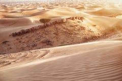 Desert sand dunes. Red and yellow desert sand dunes texture stock image
