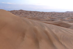 Desert Sand Dunes Royalty Free Stock Images