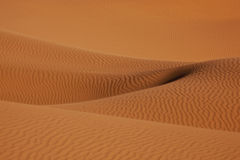 Desert sand dunes in the Sahara. Soft lines of sand dunes in the Sahara desert Stock Images