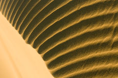 Desert sand pattern Stock Photography