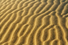 Desert sand pattern. Stockton sand dunes in Anna Bay, NSW, Australia. Sand ripples detail with dramatic shadows. Taken in low light conditions stock photos