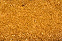 Desert sand pattern texture Royalty Free Stock Photo