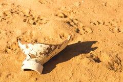 Desert sand pattern texture Royalty Free Stock Image