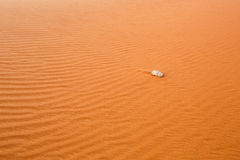 Desert sand with stone Royalty Free Stock Image