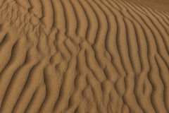 Desert sand structure Stock Photography