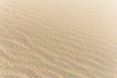 Desert. Sand with sun light Stock Photos