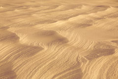 Desert sand surface Royalty Free Stock Photo