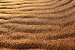 Desert sand texture background Royalty Free Stock Photo
