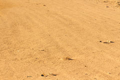 Desert sand texture Royalty Free Stock Photography