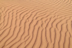 Desert sand waves Royalty Free Stock Photo