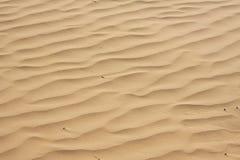 Desert sand Royalty Free Stock Images