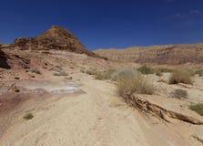 Desert. Sandstone texture, Desert Negev,  Israel Royalty Free Stock Image