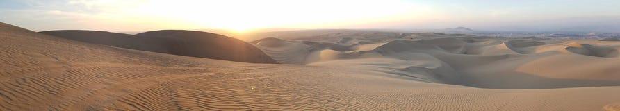 Desert. Savanna peru sand dunes oasis Royalty Free Stock Photo