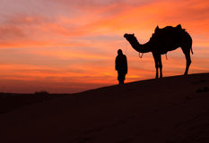Desert scence with camel and dramatic sky royalty free stock photo