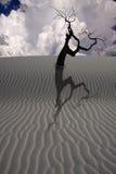 Desert Scene Royalty Free Stock Image