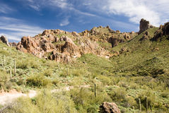 Desert scene. Scenic view of the Sonoran desert wilderness in Arizona Stock Photography