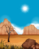 Desert scene with canyons and field Stock Photography