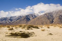 Desert scene in Death Valley. Desert landscape in death valley, CA Royalty Free Stock Photo
