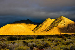 Desert Scene in Fall. Colors and overcast sky Royalty Free Stock Photo
