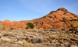 Desert Scenery Royalty Free Stock Photography