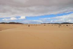 Desert scenery (Canary Island) Stock Photos