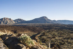 Desert Scenery (Canary Islands) Royalty Free Stock Photography