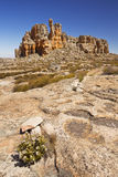 Desert scenery in Cederberg Wilderness, South Africa Stock Image