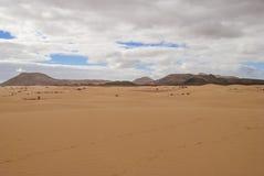 Desert scenery (Fuerteventura) Stock Image