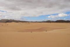 Desert scenery (Fuerteventura) Stock Images