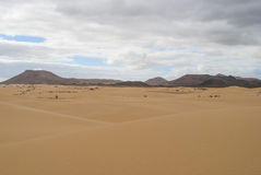 Desert scenery (Fuerteventura) Royalty Free Stock Photo