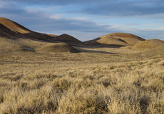 Desert scenery. Rolling hills, Lyon County, Nevada Royalty Free Stock Photos