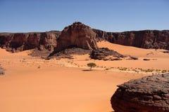 Desert scenes11 Royalty Free Stock Photo