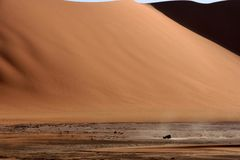 Desert scenes17 Royalty Free Stock Photo
