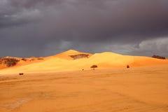 Desert scenes19 Royalty Free Stock Photos