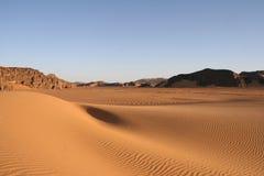 Desert scenes21 Stock Images