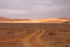 Desert scenes5 Royalty Free Stock Photo