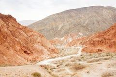 Desert scenic Royalty Free Stock Image