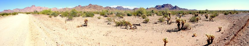 Desert Scenic Panorama. An landscape image of the desert, cholla & saguaro cactus and mountain range on the Kofa National Wildlife Refuge near the Castle Dome royalty free stock images