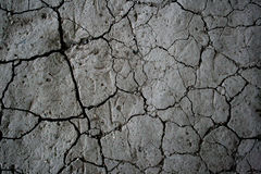 Desert. Scorched earth of the lack of water in the desert stock photography