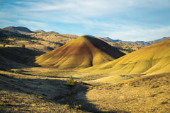 Desert shapes and colors, Painted Hills, Oregon Stock Image
