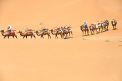 Camel Ride in Desert Royalty Free Stock Images