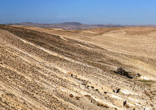 Desert Shobak in Jordan Royalty Free Stock Photography