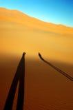 Desert silhouettes. Two desert shadow silhouettes in Sahara desert Stock Photos